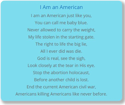 I Am an American - Terry McDermott