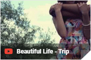 Beautiful Life - Trip Lee