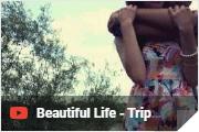 Beautiful Life - Trip Lee